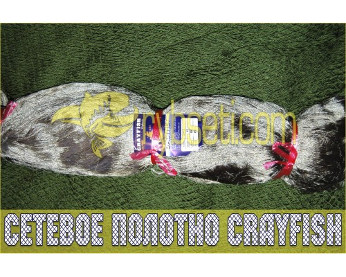 Сетеполотно из капроновой нити CrayFish (нейлон) 30мм-110den2-75я-150м